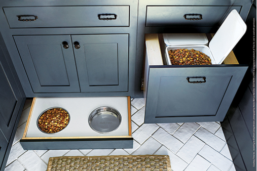 mudroom with pet accessories